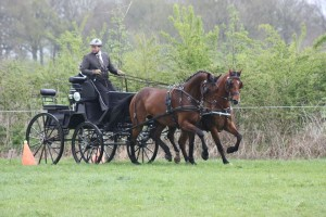 menwedstrijd paard deventer 4