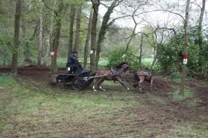 menwedstrijd paard deventer 3